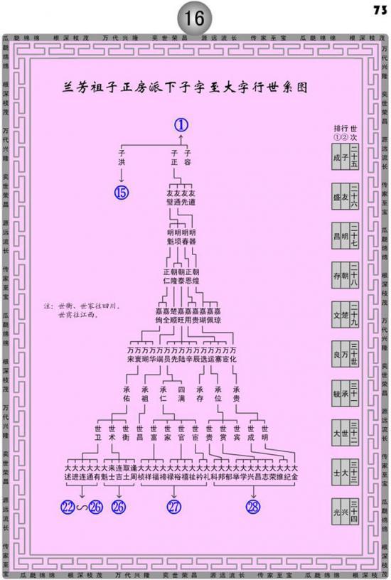 湖南桂东朱氏族谱世系图图片